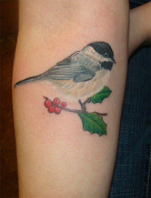 Beautiful Realistic Chickadee Tattoo By Australian Realism: Chickadee Bird Tattoo