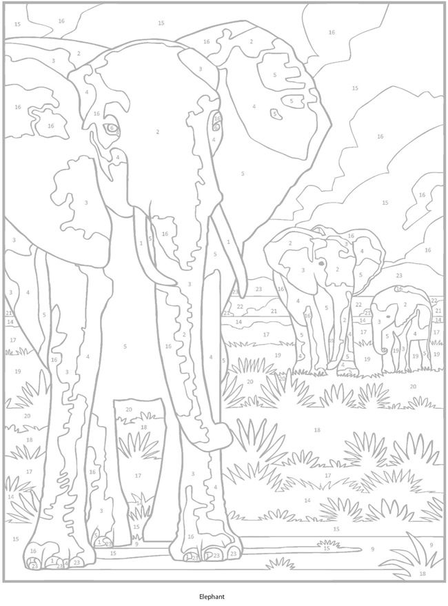 Welcome To Dover Publications Animal Coloring Pages Color By Number Printable Animal Coloring Books