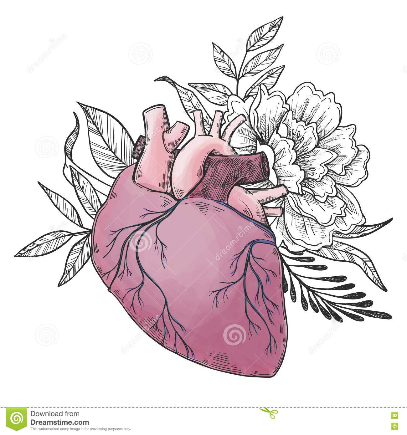 Dé Los Ejemplos Exhaustos Del Vector - Corazón Humano Con Las Flores ...