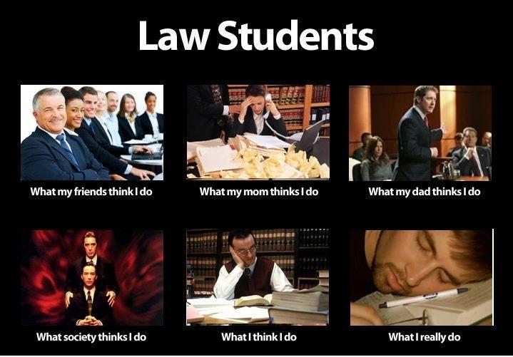 Law Students Law School Humor Law Student Law School Memes
