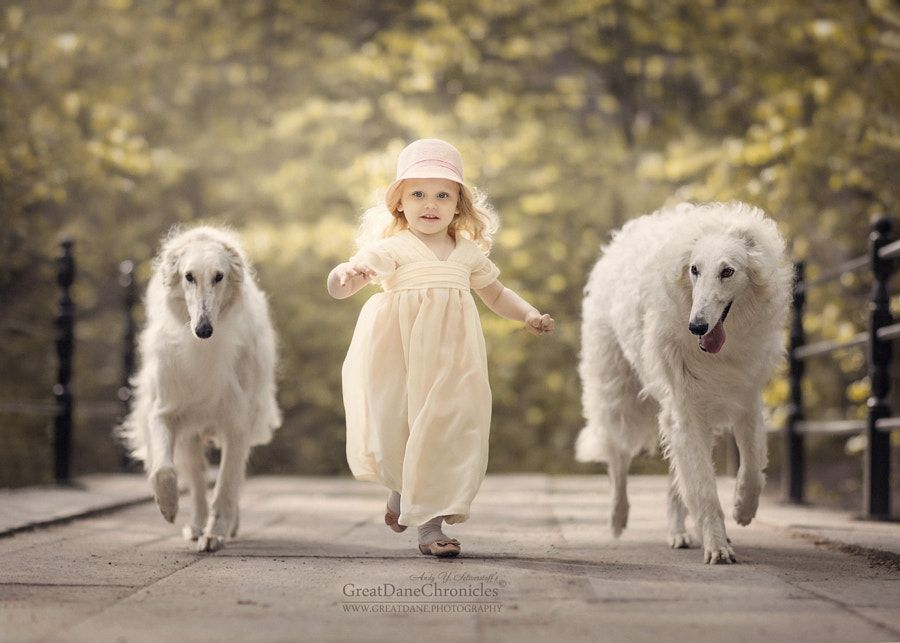 Vintage Escort By Andy Seliverstoff Photo Px - Tiny children and their huge dogs photographed in adorable portraits by andy seliverstoff