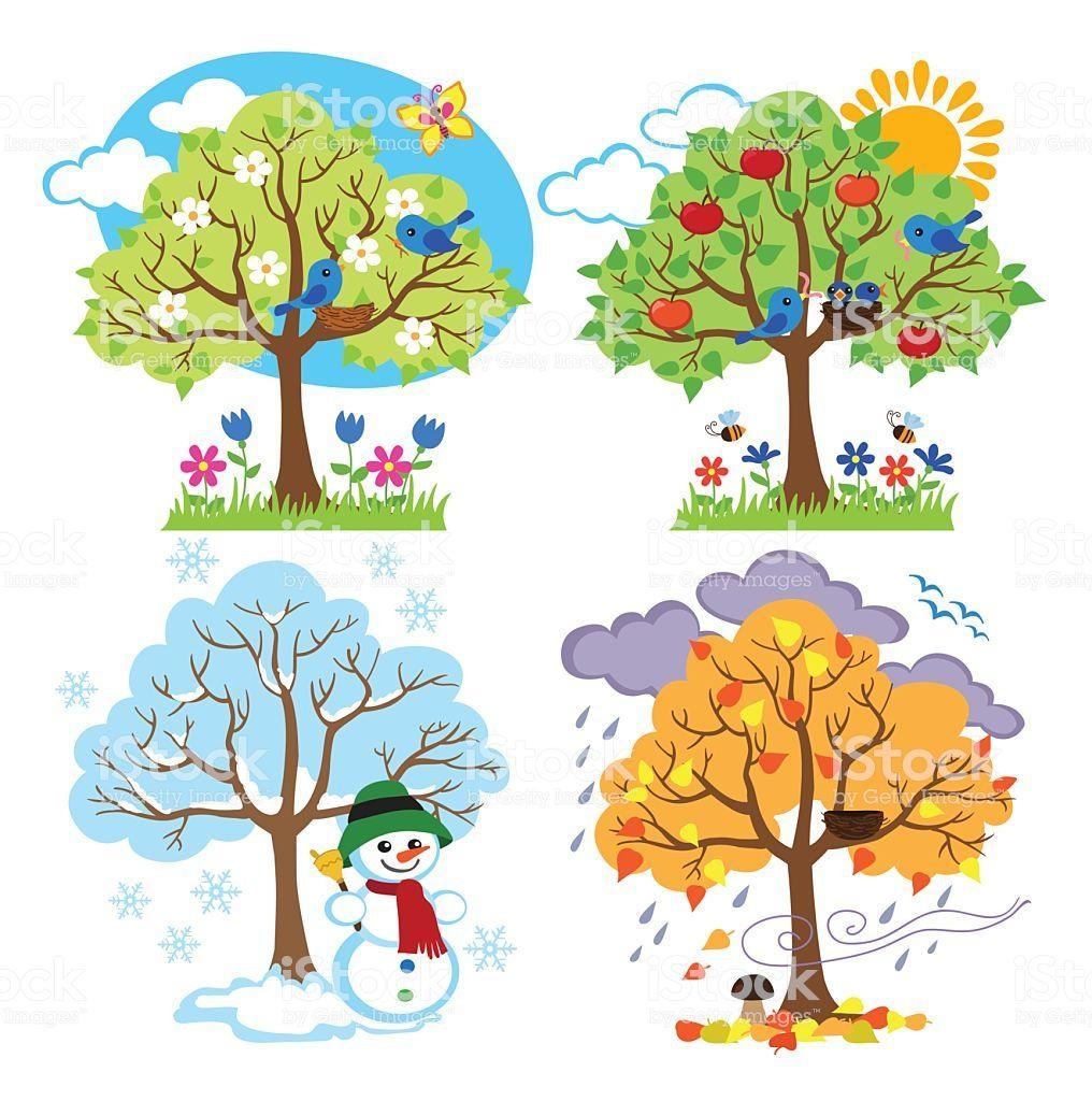 Four Seasons Trees Clipart And Vector With Spring Summer Fall And Arboles De Invierno Calendario Para Ninos Actividades De Aprendizaje Para Ninos
