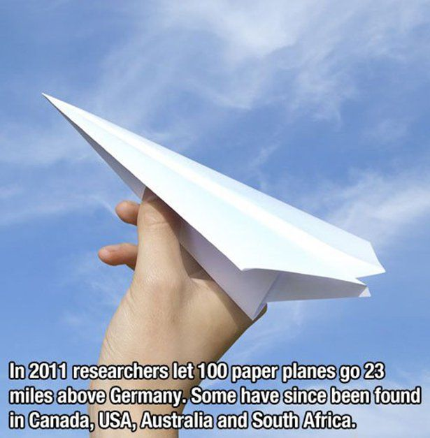 Fun Facts To Kick Off The Week Bro My God The Funniest - 15 amazing facts about the internet