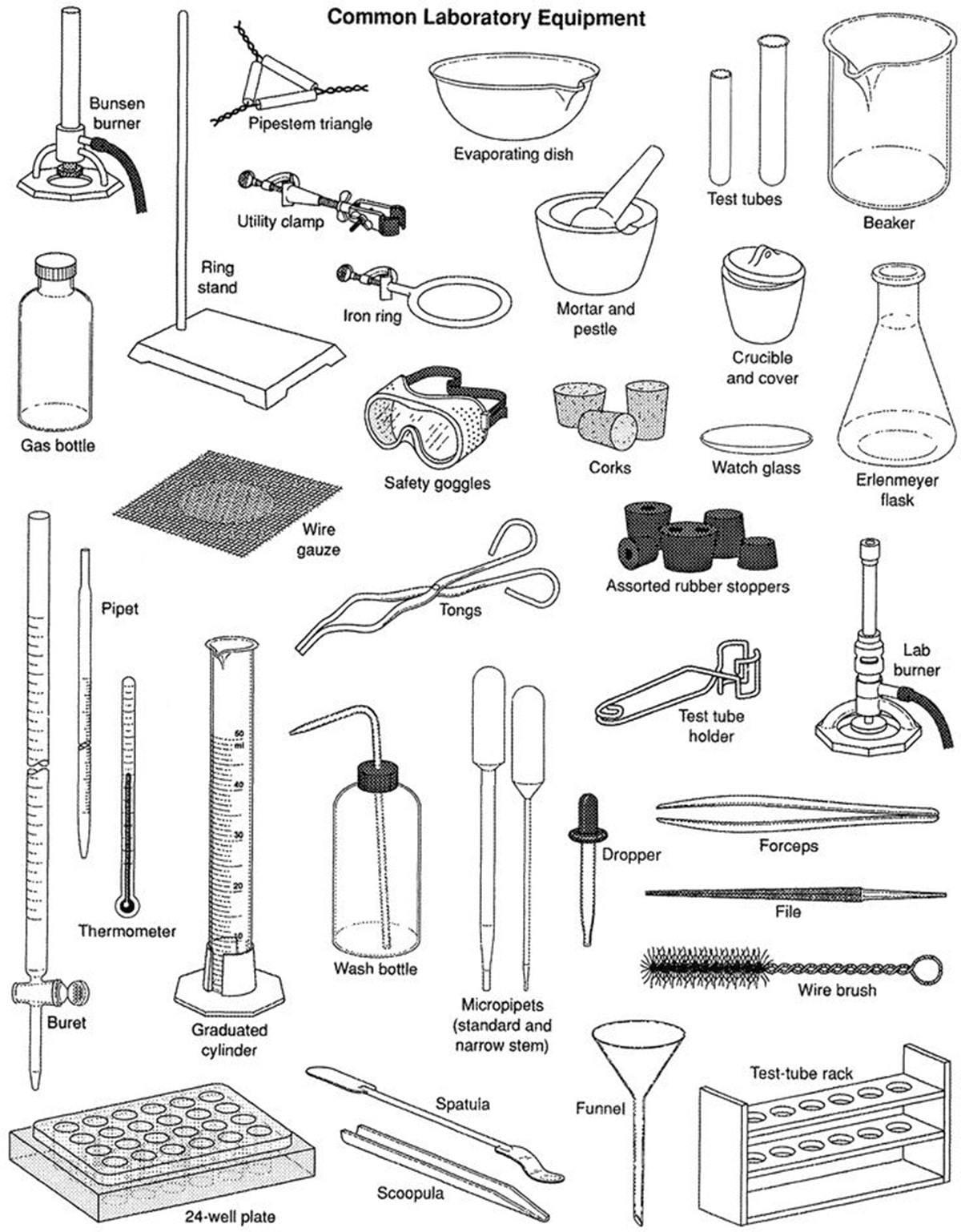 Worksheets Science Tools Worksheet scientific tools kays makehauk co tools