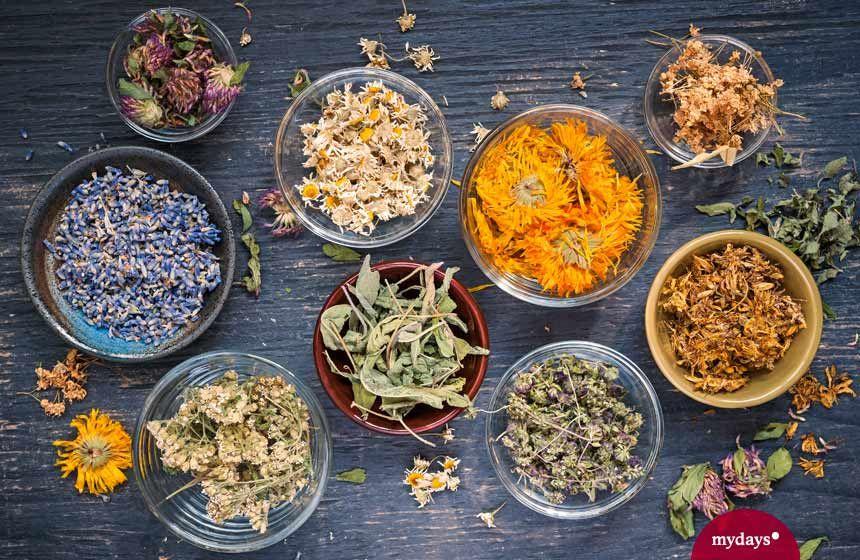 Faire du thé vous-même: nos recettes les plus délicieuses mydays   – Kräuter und Tee