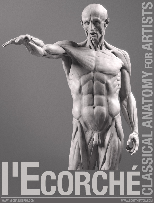 Lecorche Classical Anatomy For Artists App Apps Pinterest