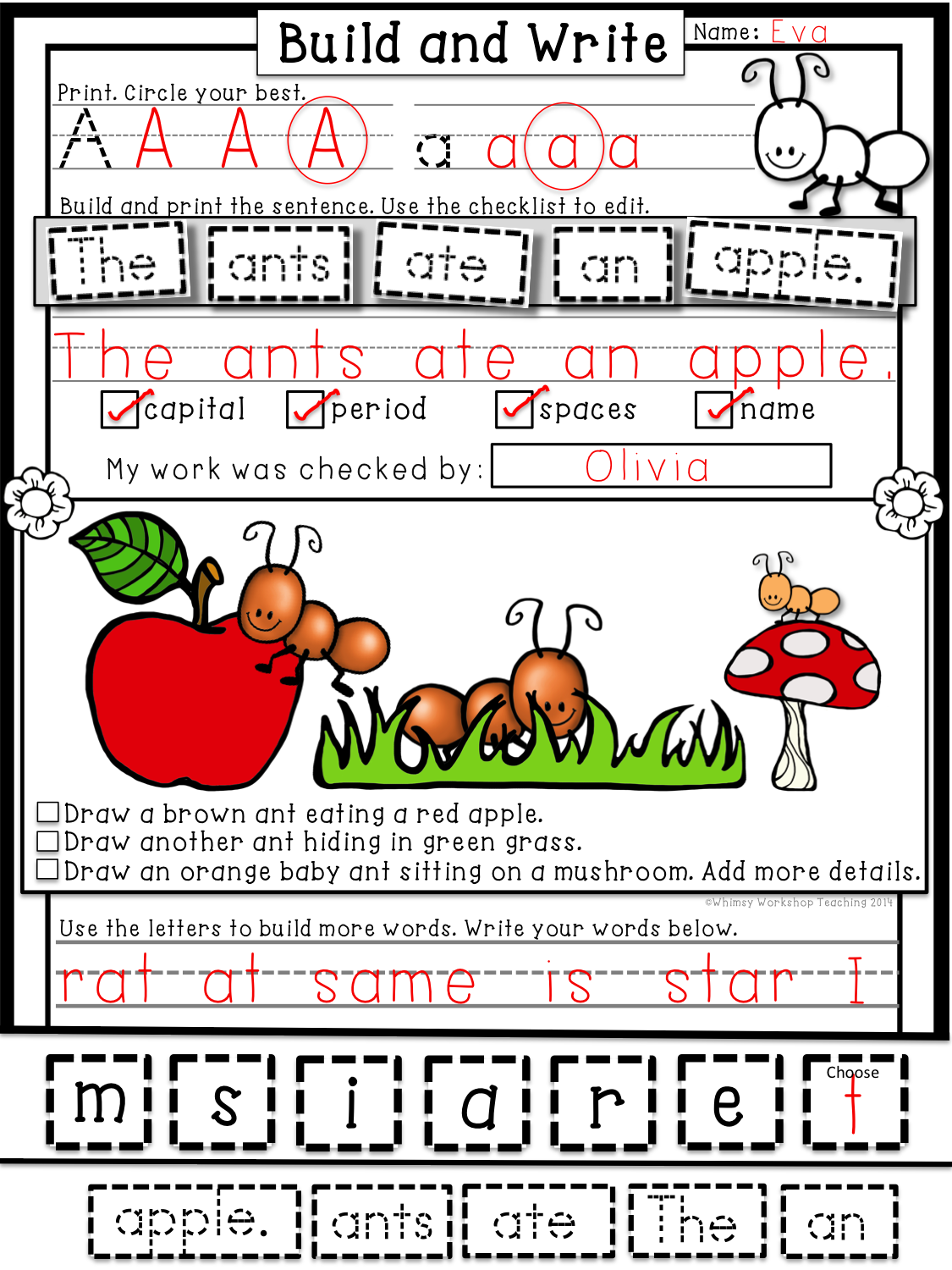Build and Write Differentiated Phonics Workbook and
