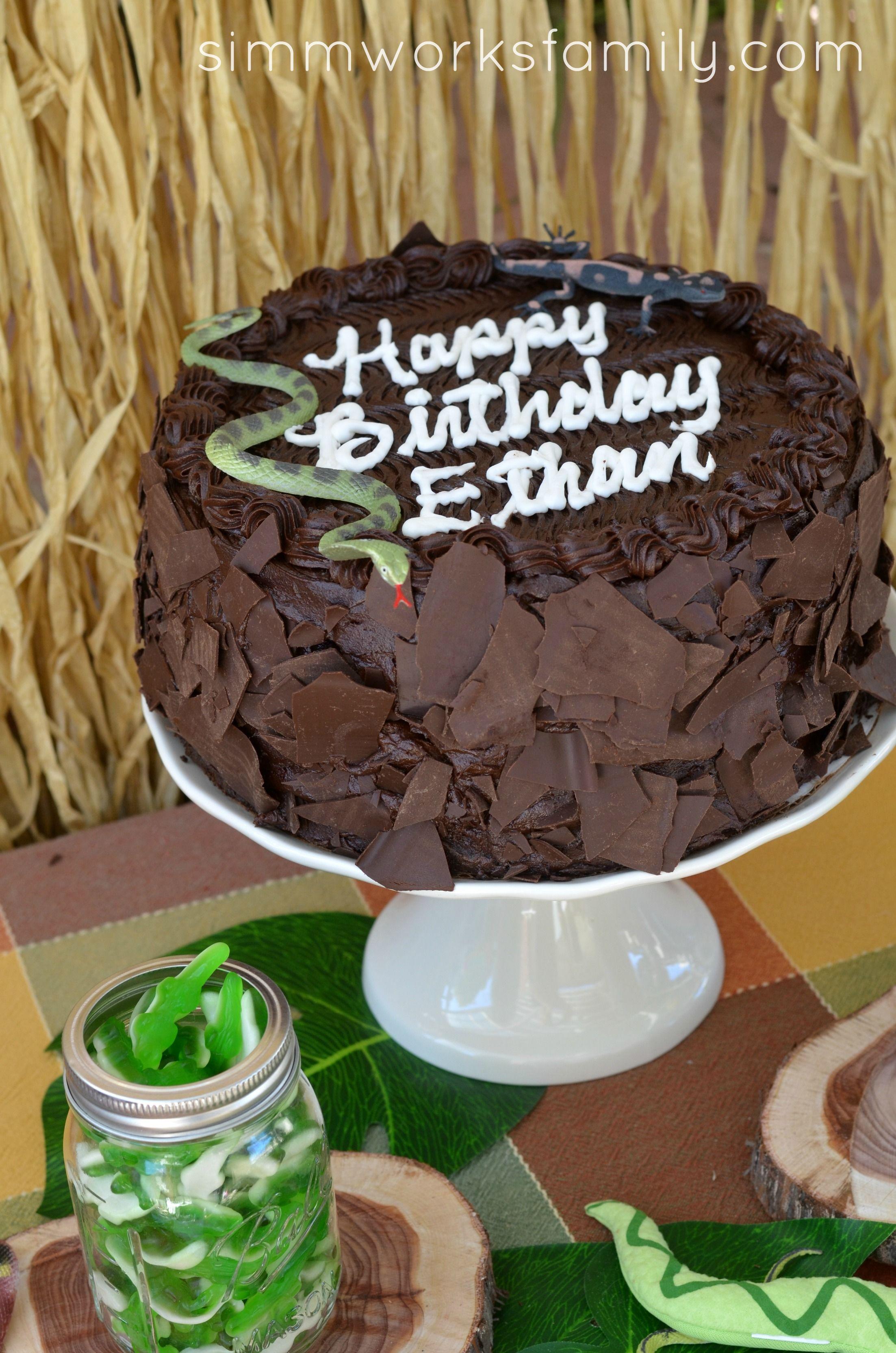 Reptile Birthday Party Snake Cake Cakepins