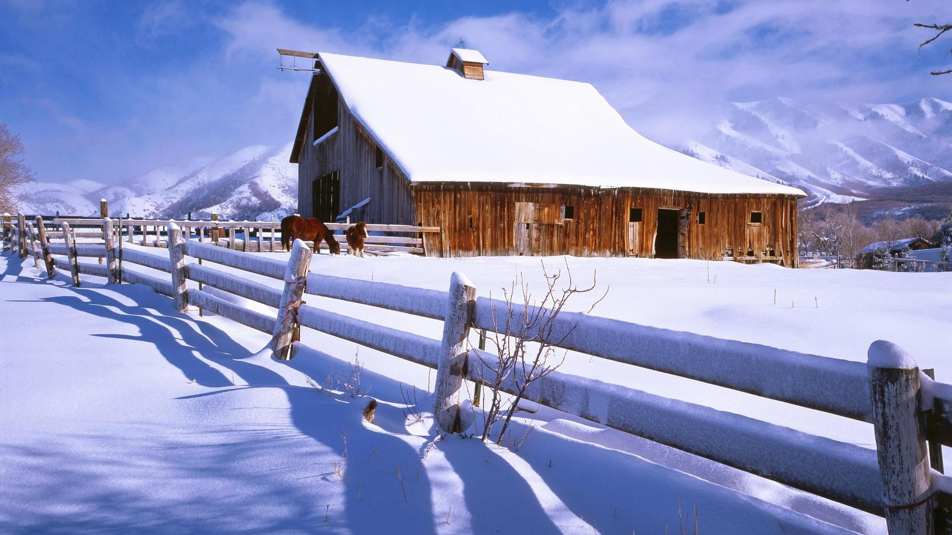 Winter Wallpaper Barn