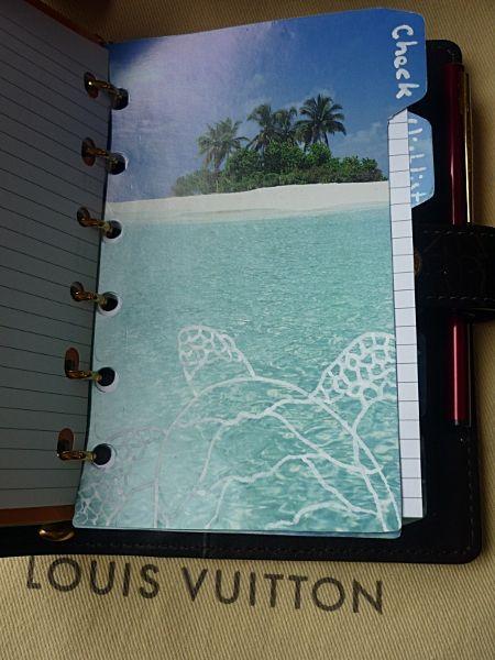Tabs I made for my Louis Vuitton Amarante PM Agenda.