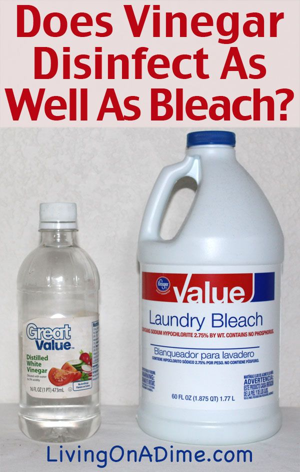 Does Vinegar Disinfect As Well As Bleach Living On A Dime To