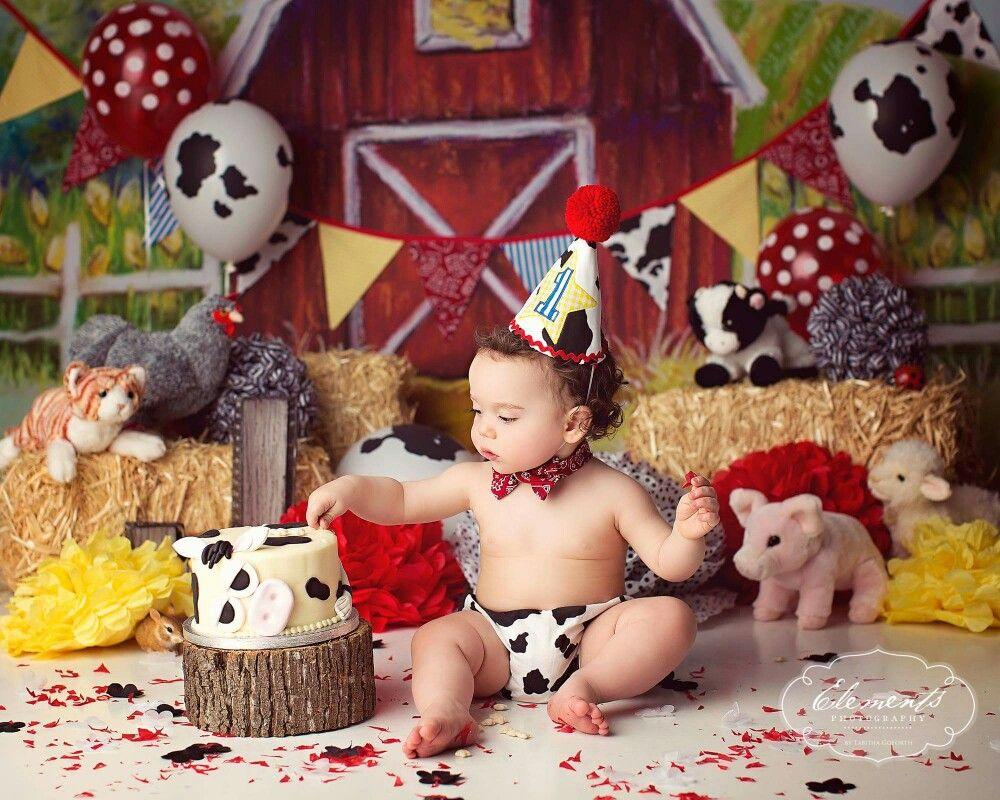 Barn Farm Cake Smash With Images Farm Animal Birthday