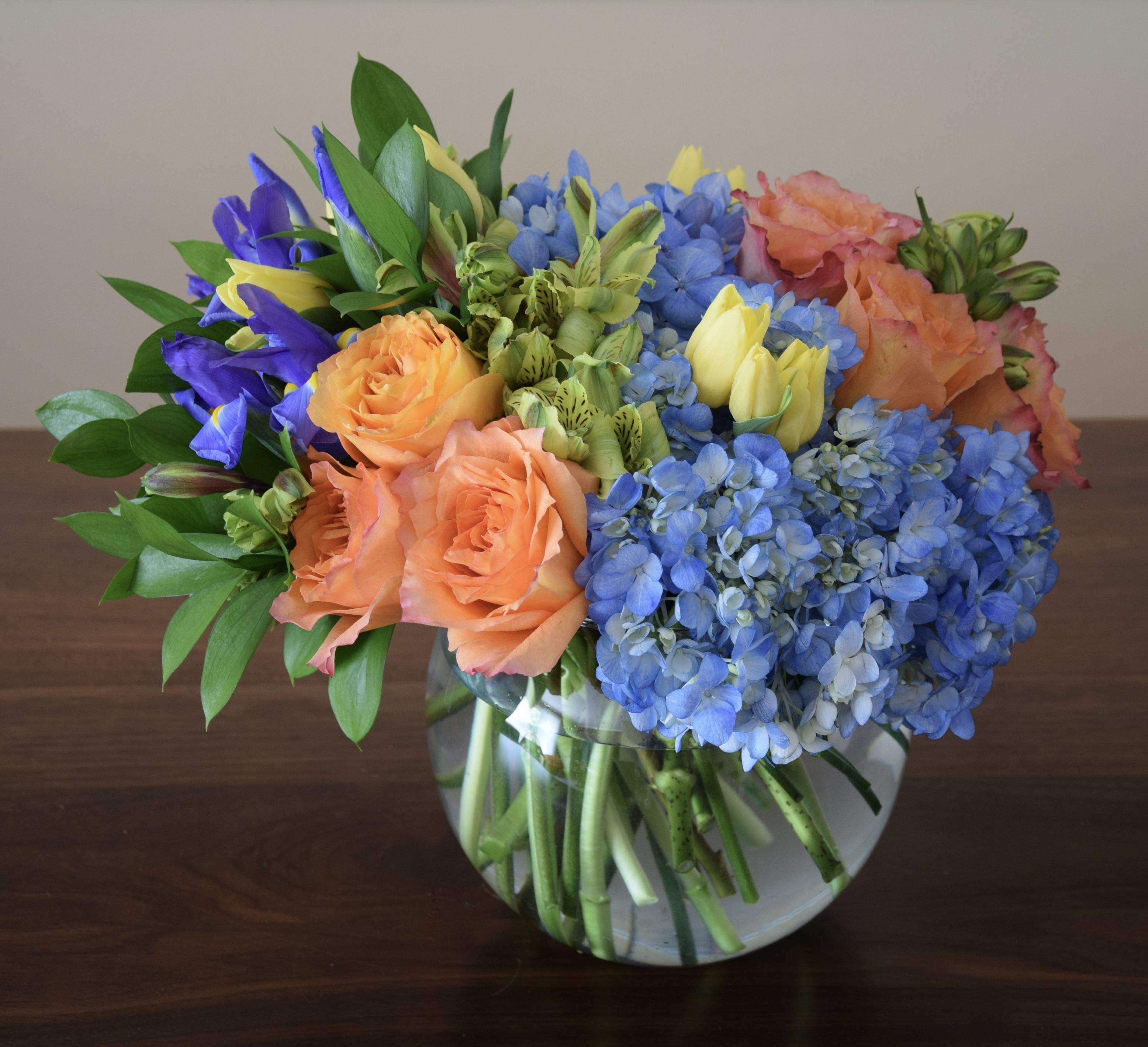 blue iris flowers dc
