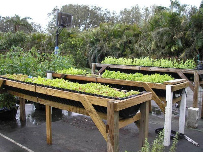 Raised Bed Vegetable Gardening For Beginners · Garden Design ...