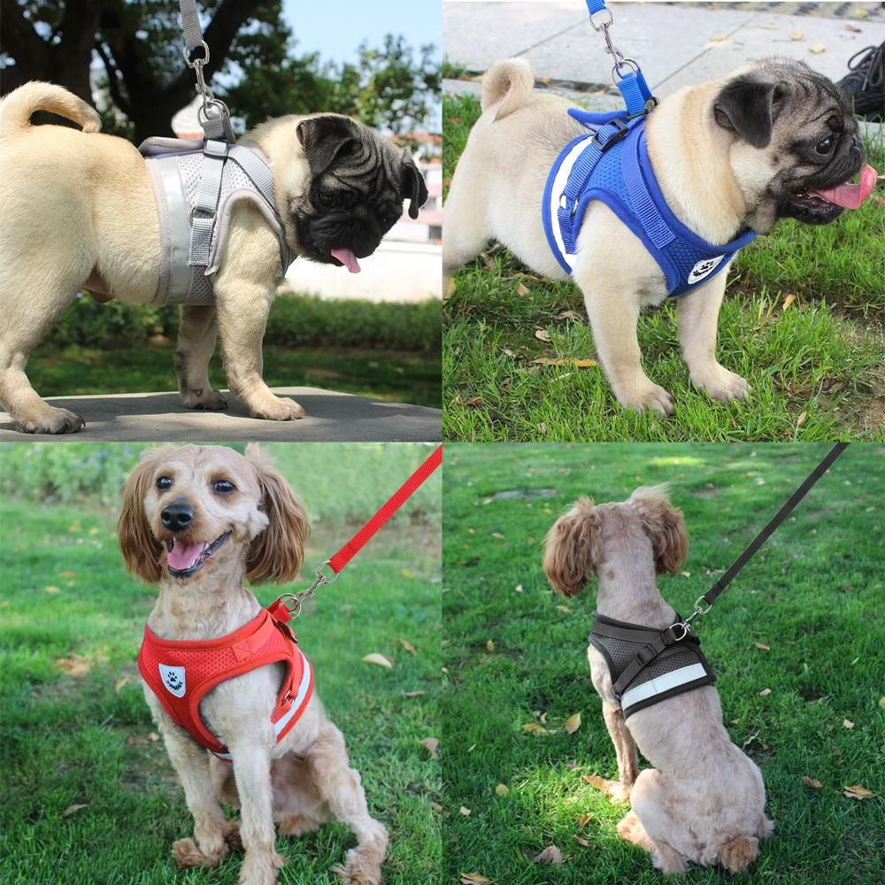 Reflective Harness Vest Matching Leash For Small Dogs Dog