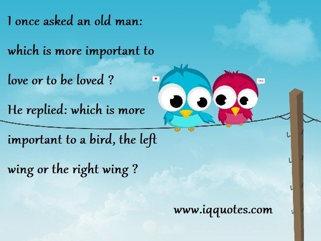 Love Bird Quotes Love Bird Quote Love Bird Quotations Love