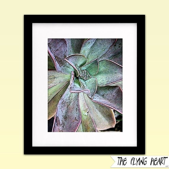 Printable wall art decor: Plant stylized photography, Succulent, plant art, close up, green, purple with texture by  TheFlyingHearts on Etsy, $5.00