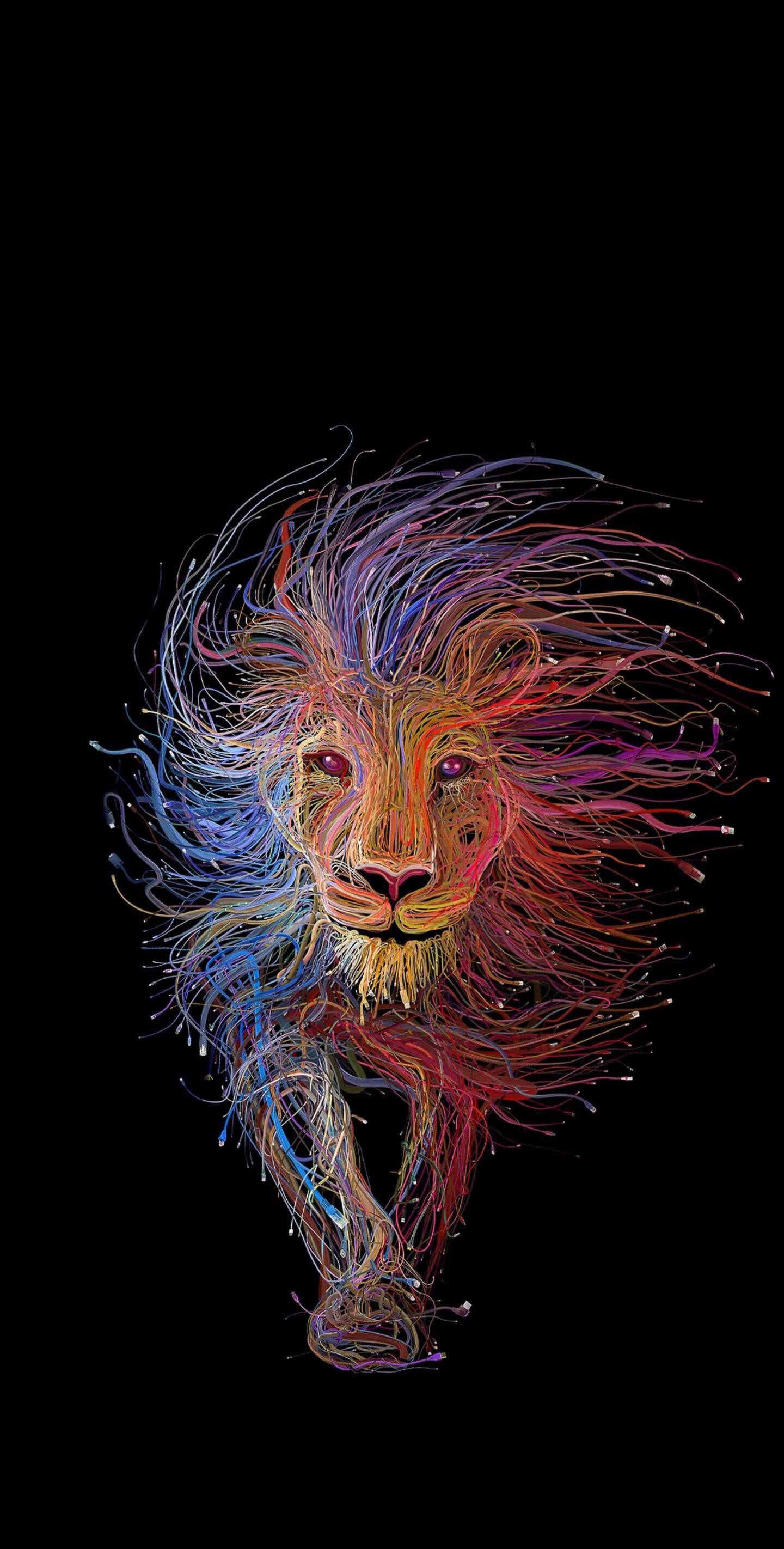 Amoled vivid lion Download at http//www.myfavwallpaper