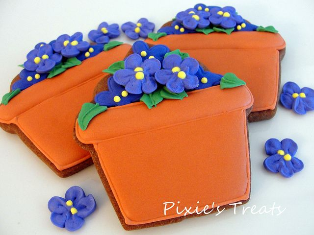 Potted Violets by Pixie's Treats, via Flickr