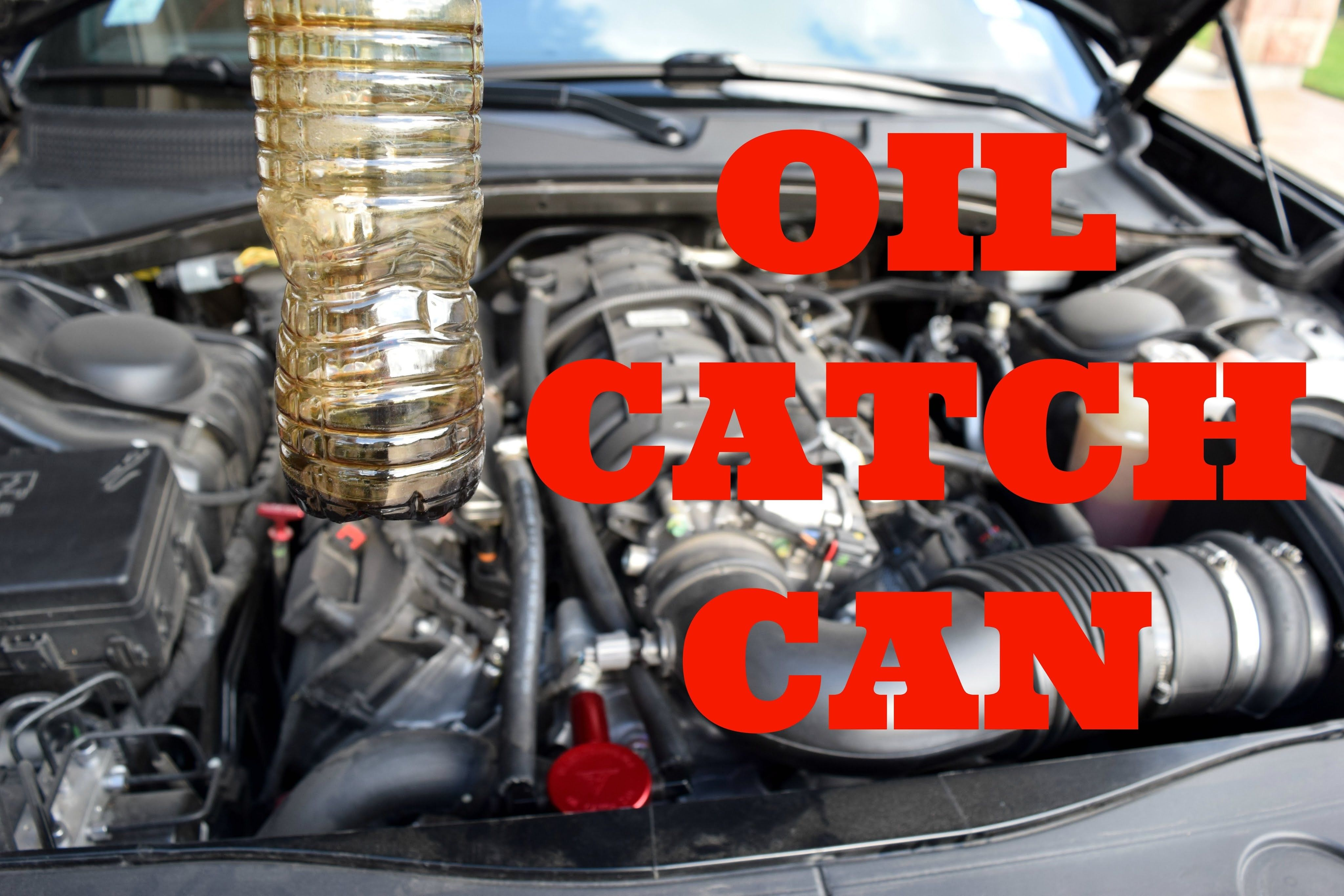 Related Reviews Dodge Challenger And Dodge Challenger Oil Catch
