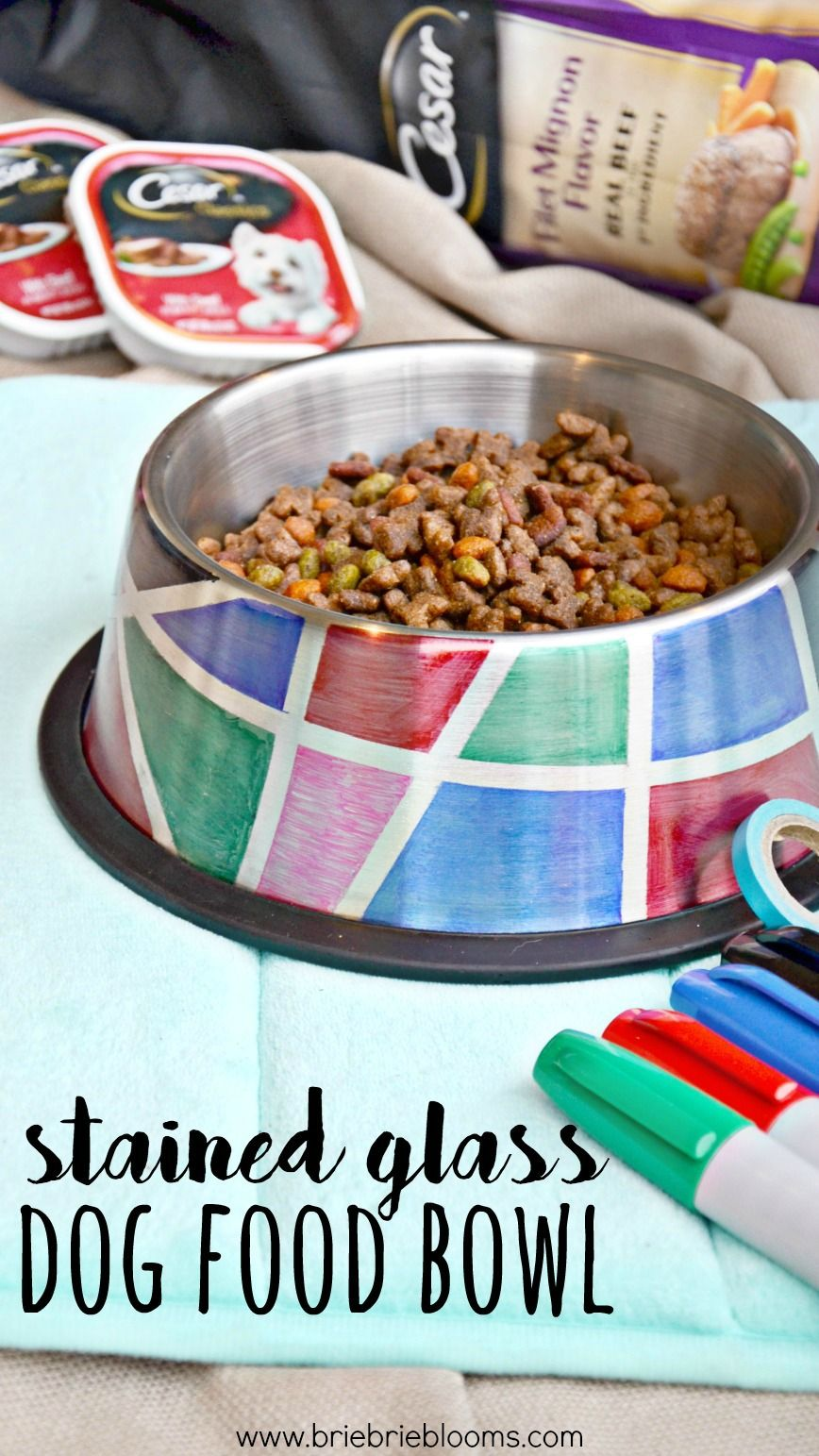 Diy Stained Glass Dog Food Bowl Dog Food Recipes Dog Food Bowls