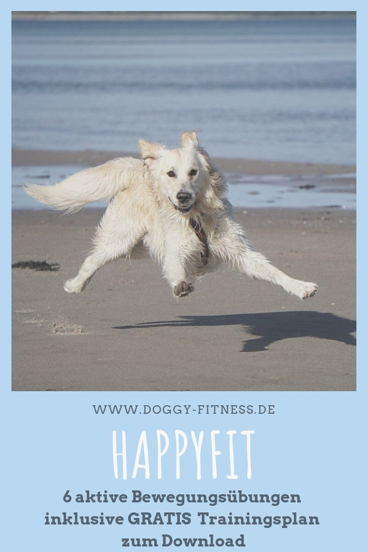 Photo of HAPPYFIT aktives Bewegungstraining mit GRATIS Trainingsplan
