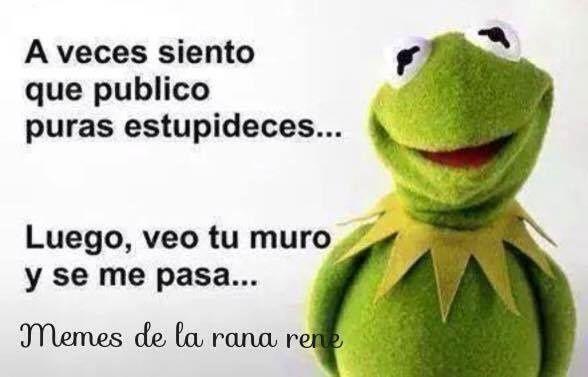Los Mejores Memes De La Rana Rene Para Compartir En Facebook Es La Moda Memes De La Rana Humor Testigos De Jehova Frases De Buen Humor