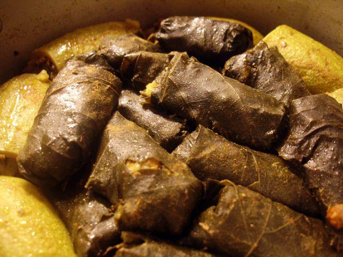 Abrak libyan stuffed vine leaves project north africa food forumfinder Gallery