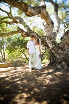 Eling park wedding venues