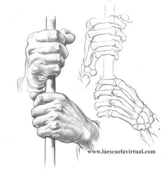 Tutorial Dibujando Manos Posiciones Anatomia Forma Tutorial Gratis Curso Online How To Draw Hands Drawing Draw Dibujo Lapiz Dedos