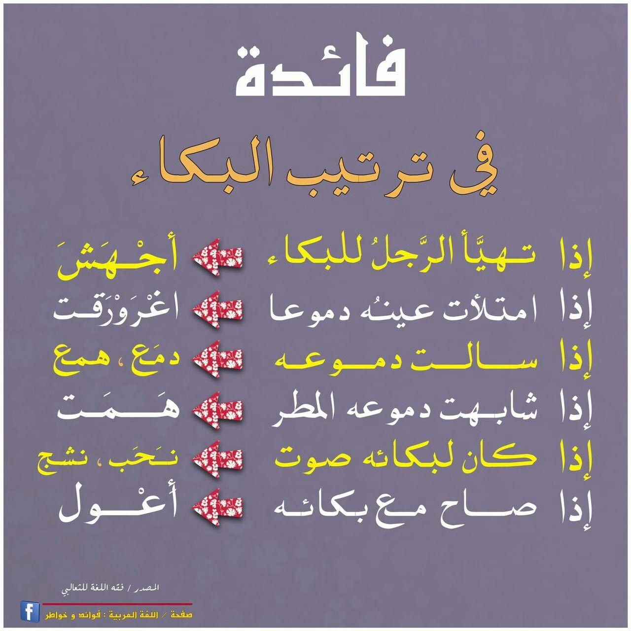 فائدة لغوية في ترتيب البكاء Beautiful Arabic Words Learning Arabic Words Quotes
