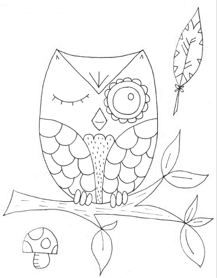 owl blink   \