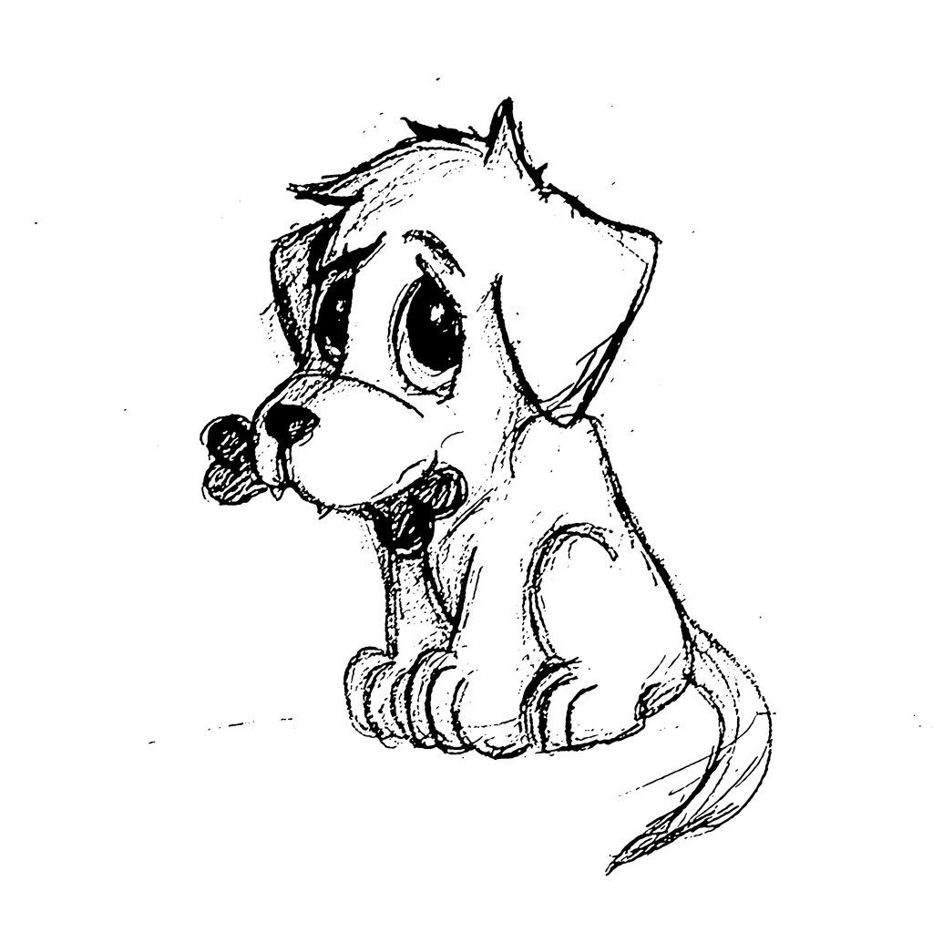 Uncategorized Puppies Drawings sketches of puppies google search subject matter pinterest drawings