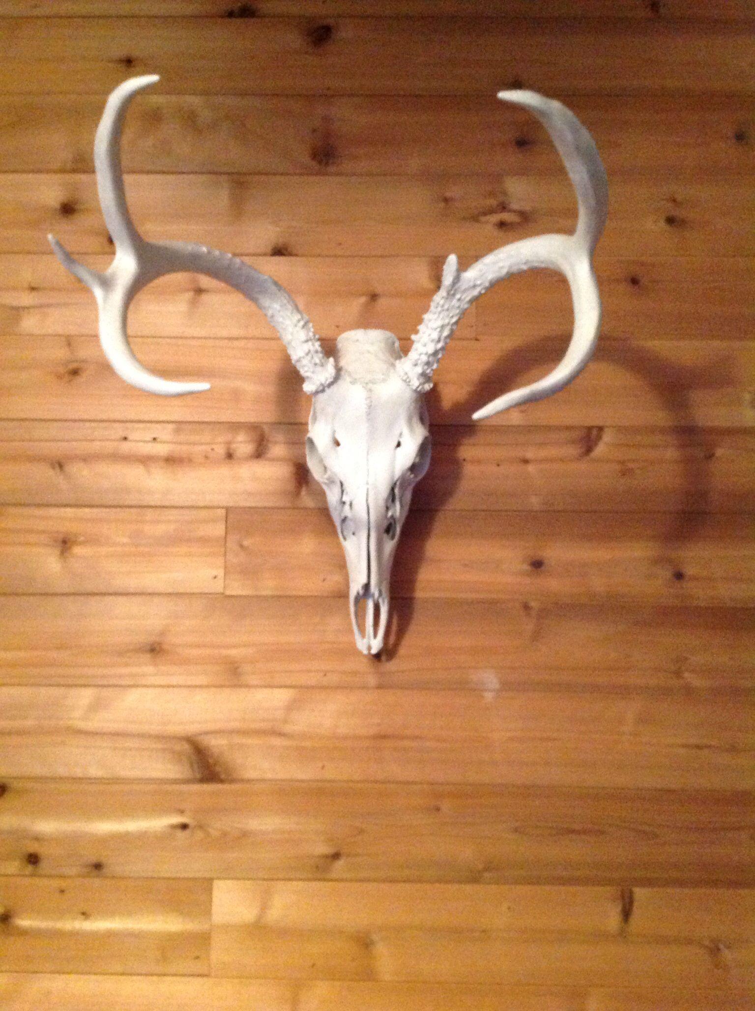 Plasti Dipped Deer Skull