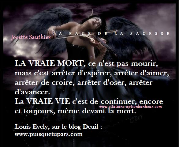 Citations Sur La Vie Et La Mort Les Panneaux Roses