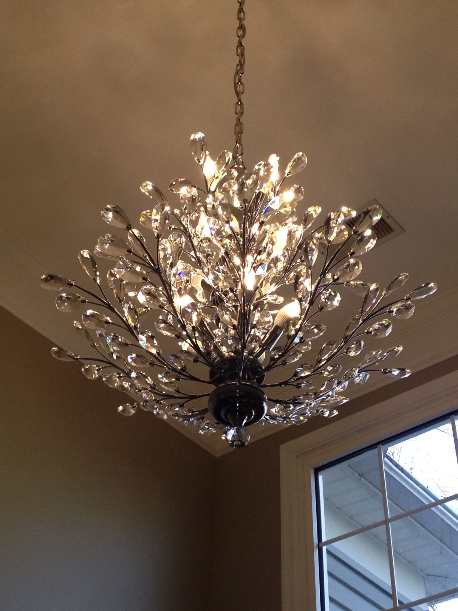 Foyer chandelier: Branch of Light design, Joshua Marshall Home ...