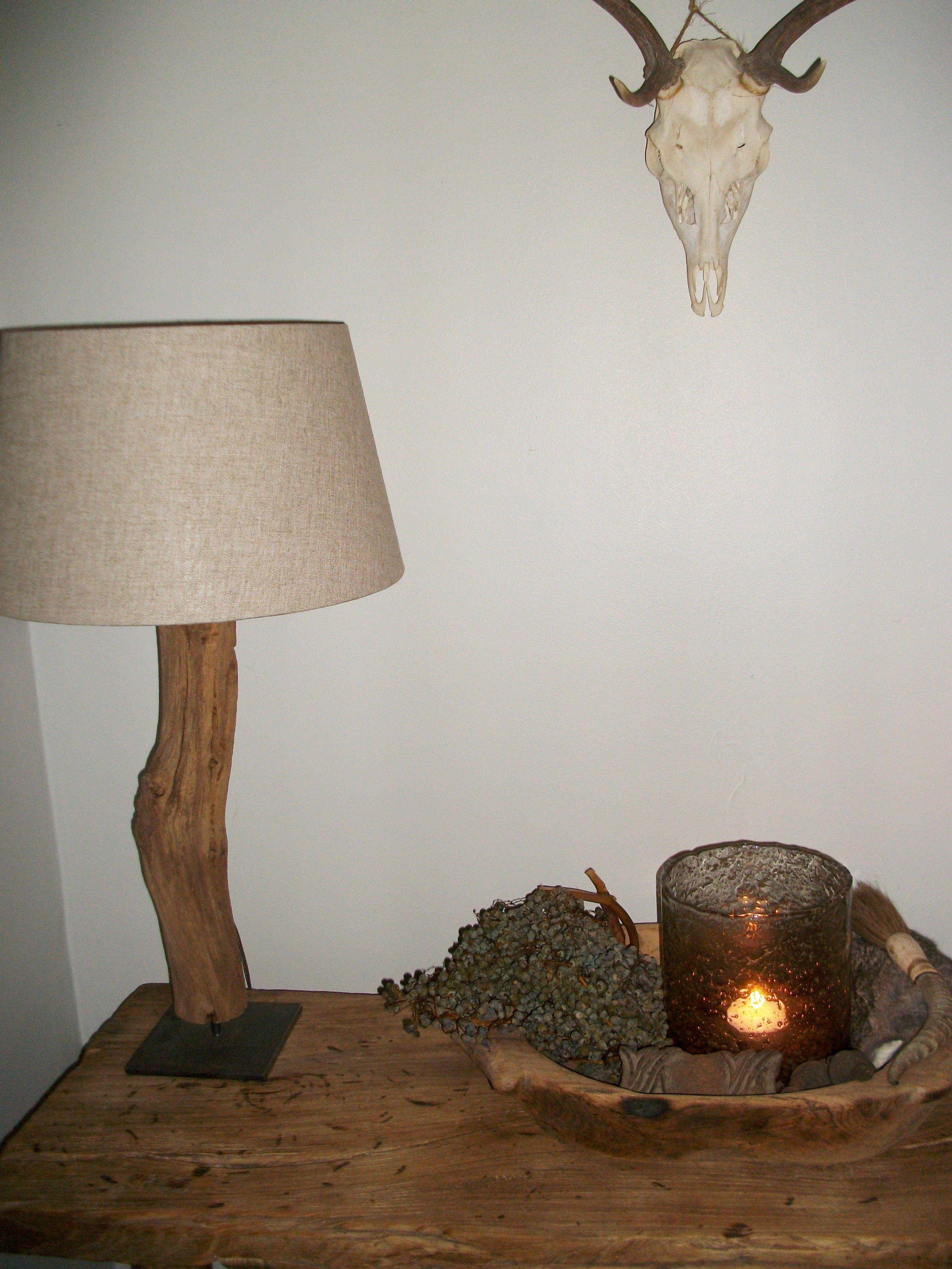 Sober handgemaakte lamp gemaakt van driftwood. Op een ijzeren statief.