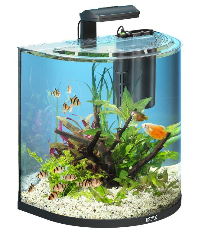 Aquarium Aqua Art Explorer (60 litres)