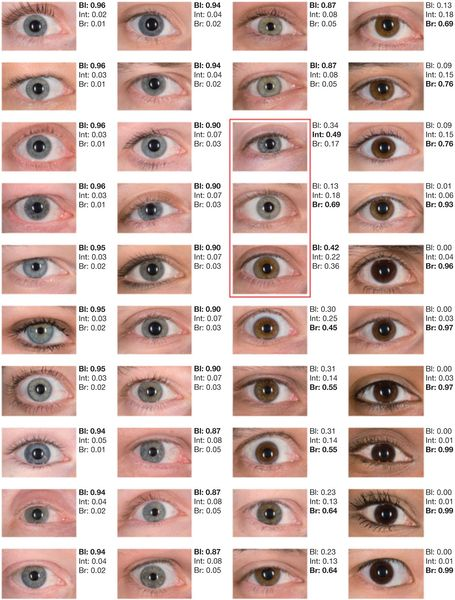 Of 40 different blue eye colors, only the three colors in the red ...