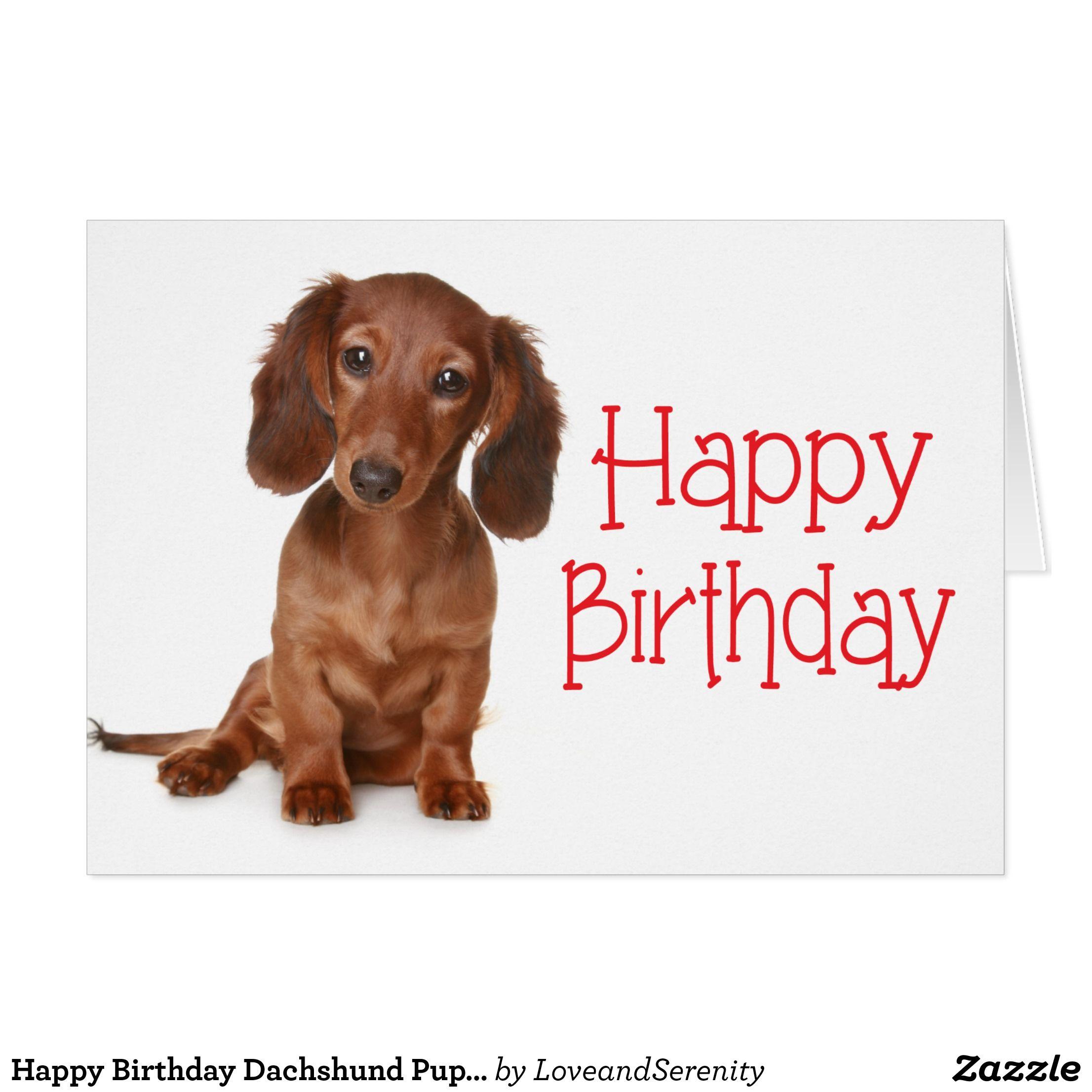 Happy Birthday Dachshund Puppy Dog Card Zazzle Com Happy