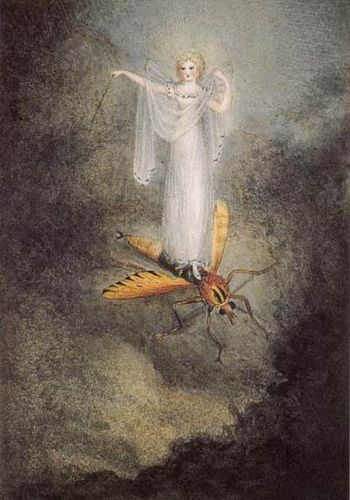 Amelia Jane Murray, The Moth Fairy 1800s by Gatochy, via Flickr