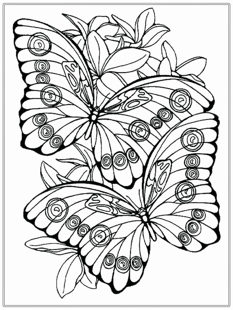 Spring Coloring Sheets For Adults Butterfly Coloring Page