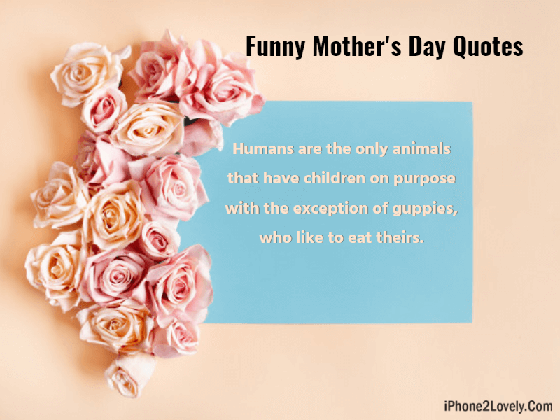 Best 90 Happy Mothers Day Funny Messages And Wishes Quotes Yard Happy Mother S Day Funny Funny Mothers Day Happy Mothers Day Images