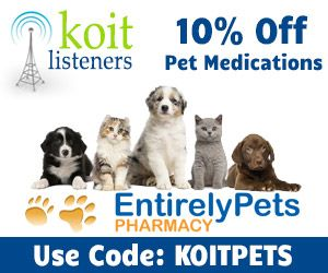 Rakuten Marketing Pets Your Pet
