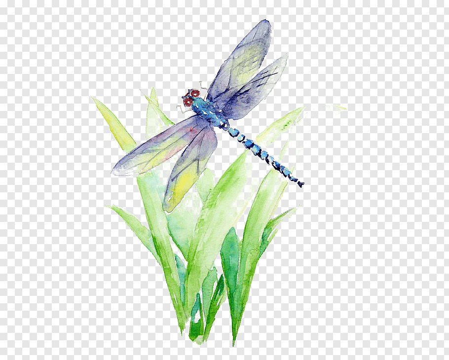 Blue And Purple Dragonfly Illustration Watercolor Painting Art Drawing La Biancheria Wate Watercolor Flower Background Watercolor Dragonfly Butterfly Drawing