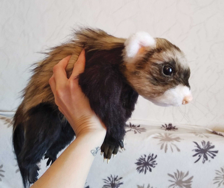 Ferret Realistic Animal Custom Pet Portrait Toy Ferret Plush Toy Art Doll Animal Handmade Plush Ferret Gift Cute Home Artist Toy In 2020 Custom Pet Portraits Handmade Plush Pets