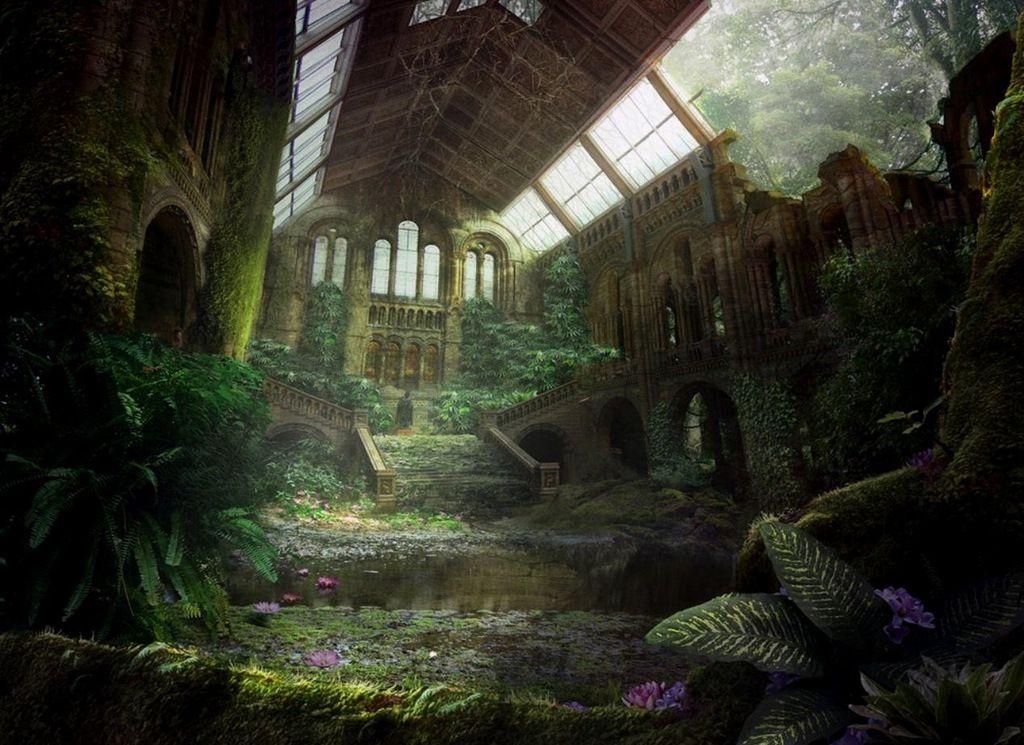 Nature Reclaims