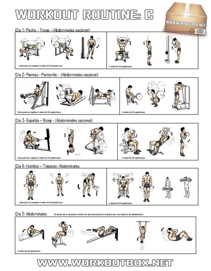 Workout Routine C Fitnesshashtag Img 161 Healthy Fitness Full Body Training Plan Gym