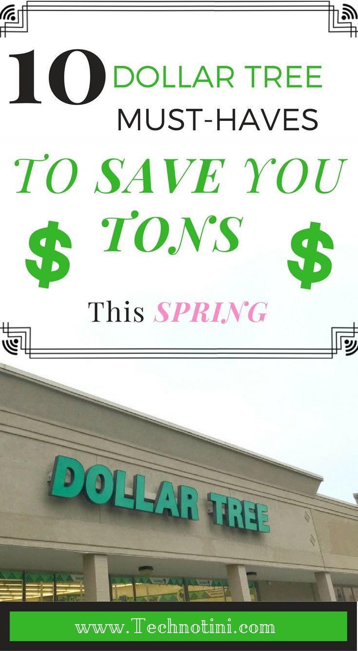 Dollar tree musthaves to save you tons this spring st