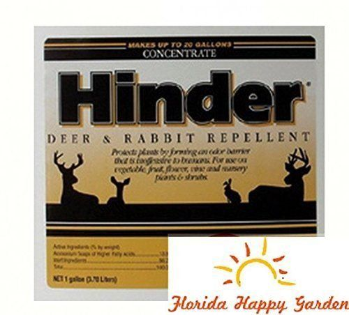 Hinder Deer Rabbit Repellent 1 Gallon Rabbit Repellent Repellent